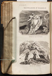 Illustrations of Eclogue IV. Orpheus and Eurydice. Death of Orpheus.
