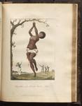 Flagellation of a Female Samboe Slave. [Colour Version]