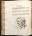 [Illustration to] Fragment Second, Physiological Miscellanies. Chap. I. Of the Temperaments. Addition I. [in Volume III of] Essays on physiognomy designed to promote the knowledge and the love of mank