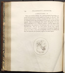 [Illustration to] Fragment Second, Physiological Miscellanies. Chap. II. Of the Strength and Weakness of Constitution. Addition A. [in Volume III of] Essays on physiognomy designed to promote the know
