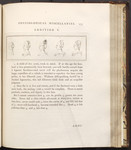 [Illustration to] Fragment Second, Physiological Miscellanies. Chap. IV. Of Youth and Old Age. Addition V. [in Volume III of] Essays on physiognomy designed to promote the knowledge and the love of ma