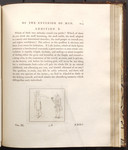 [Illustration to] Fragment Fourth, Of the Exterior of Man, and of Some Other Analogous Indications. Additions to Chapters I. II. III. Addition E. [in Volume III of] Essays on physiognomy designed to p