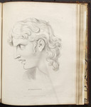 Attention - [Illustration to] Fragment Fourth, Of the Exterior of Man, and of Some Other Analogous Indications. Additions to Chapters I. II. III. Addition P. [in Volume III of] Essays on physiognomy d