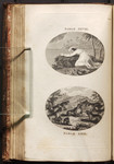 [Illustrations to] Part I. Fable XXVIII. [The Persian, the Sun, and the Cloud] [and] Fable XXIX. [The Fox at the Point of Death]