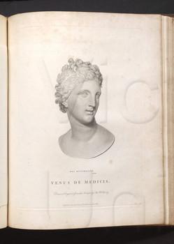 Venus De Medicis.
