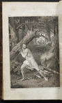 [William Blakes Engraving in Orlando of Ariosto]