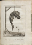 A Negro hung alive by the Ribs to a Gallows.
