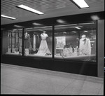 Seesquicentennial display cases